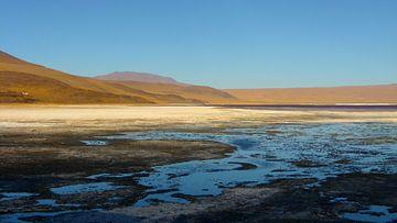 'Zoutwater plas', Bolivia van Martine Joanne