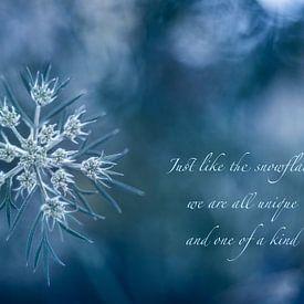 Snowflake von Christl Deckx
