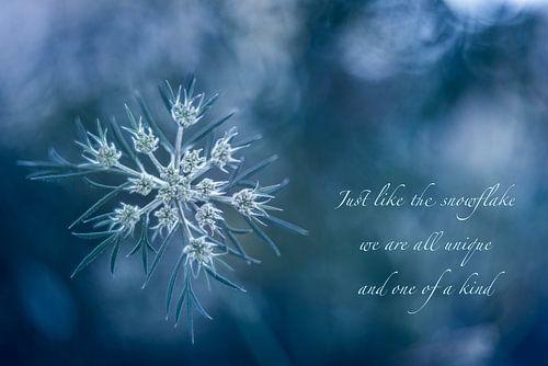 Snowflake van