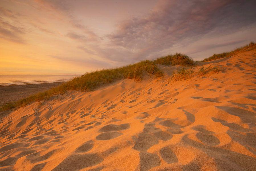 Strand en duin Wassenaar