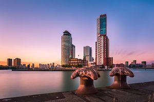 Kop van Zuid achter bolders van Prachtig Rotterdam