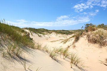 Hollandse duinen van Jolene van den Berg