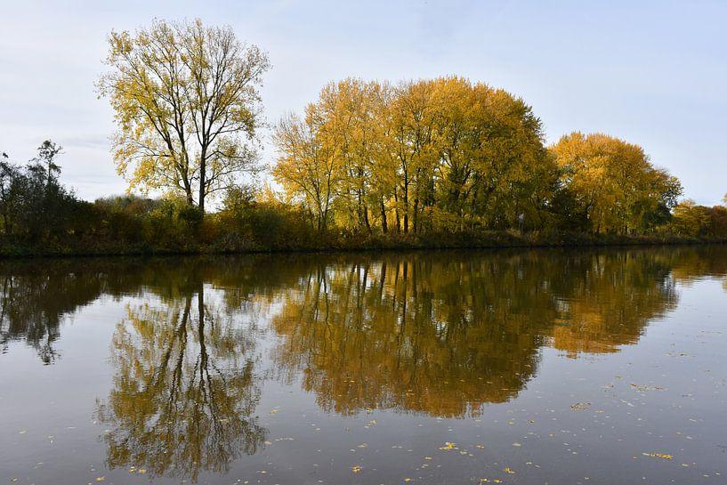 Yellow reflections van Henk de Boer