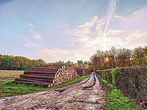 Der Holzstapel von Frank Maurits