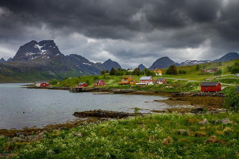 Natuur op de Lofoten. van Hamperium Photography