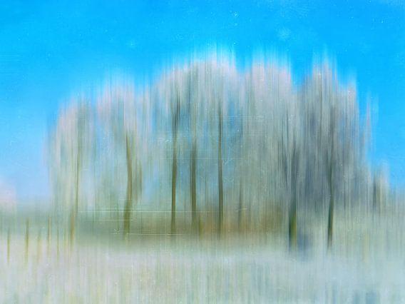 Magic winter trees 20