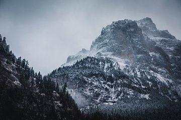 Schneebedeckte Berge von Abby's Voyage