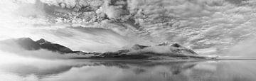 Ochtend panorama van een bevroren land