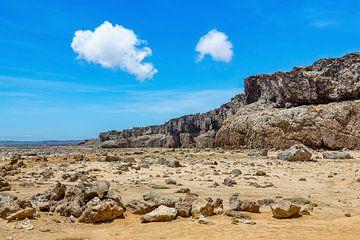 Landschaft im Naturschutzgebiet oder Nationalpark Slagbaai auf der Insel Bonaire von Ben Schonewille