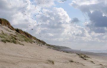 duinen aan zee van Tjiske Regnerus
