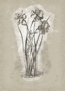 Fleurs dans le style de dessin 1