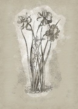 Bloemen in tekenstijl 1 van Ariadna de Raadt