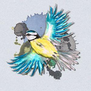 Mésange bleue volante