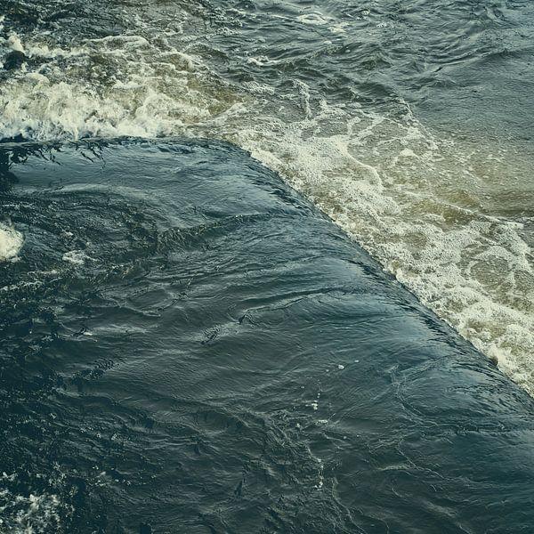 la forme de l'eau sur Ann Beckers