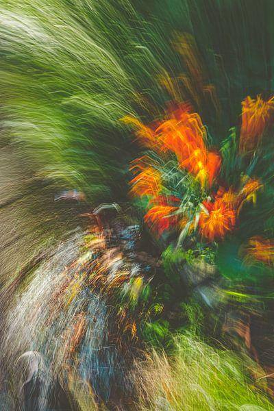 Blumenstrauß von Jan Peter Jansen