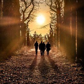 Wandelaars in het bos met de zon in het tegenlicht van Harrie Muis