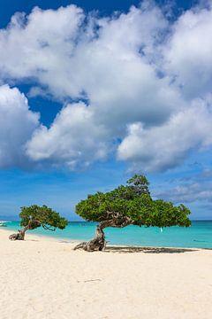 Waanzinnige kleuren op een Caribisch strand van Arthur Puls Photography
