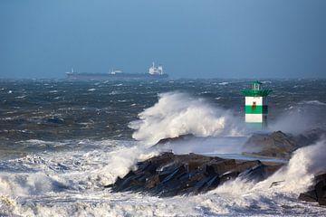 November-Sturm II von Sander van der Borch