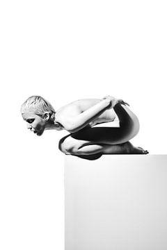 Serie Nackte Frau fotografiert auf einem grauen Block #4098 von william langeveld