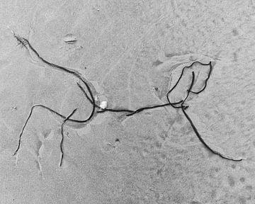 Spelende hond op het strand_Schierblikken_RW_#7 van Bernadette van Beurten | ideeënkunstenaar| SCHIERBLIKKEN |