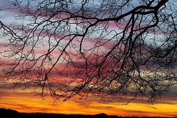 Zonsondergang in december van whmpictures .com