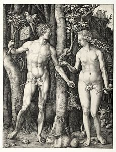Adam und Eva, Albrecht Dürer
