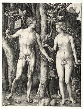Adam und Eva, Albrecht Dürer von De Canon