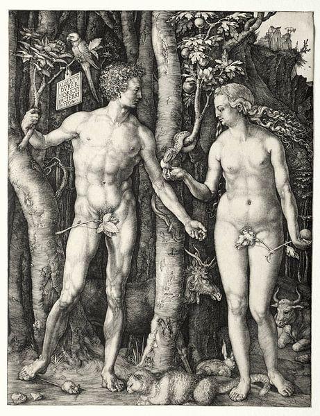 Adam en Eva, Albrecht Dürer van De Canon