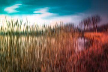 kleurrijk landschap van URS.INHO