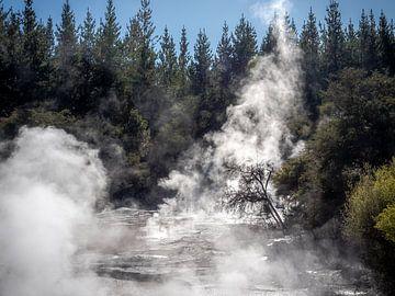Neuseeland - Rotorua - Dampfendes Schlammbad im Waiotapu Thermal Wonderland von Rik Pijnenburg