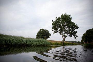 Bossche Broek, 's-Hertogenbosch van Kees van Dun
