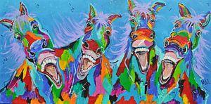 -Paarden met humor