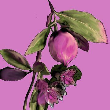 Bloemen rose van Raina Versluis