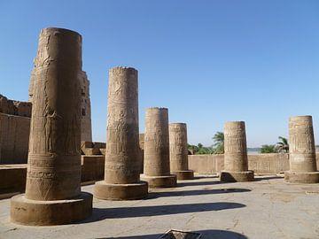 Krokodilen tempel Egypte van Martin van den Berg Mandy Steehouwer