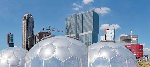 Drijvend paviljoen bij de wolkenkrabbers Kop van Zuid, Rotterdam, , Zuid-Holland van