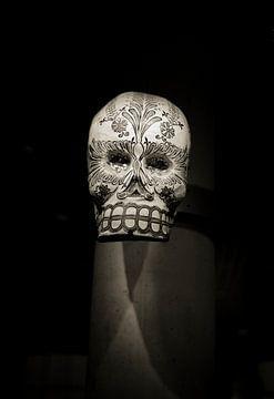 bewerkte schedel /doodshoofd in sepia van Rob van Keulen