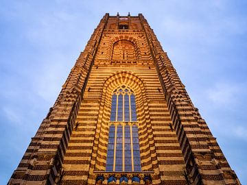 Basiliek in Oirschot van Maikel Brands