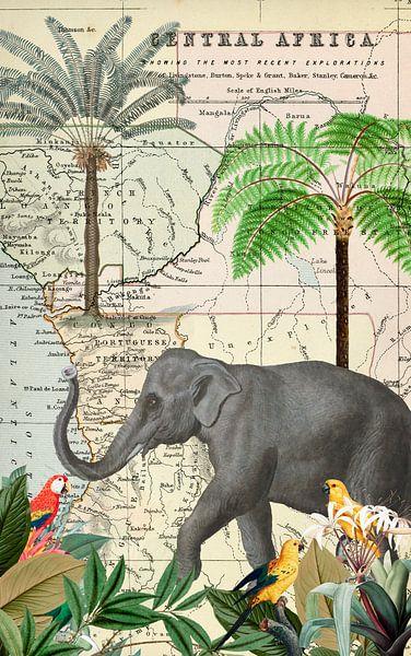 Elefant In Afrika von Andrea Haase