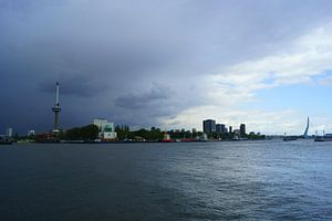 Maas in Rotterdam van