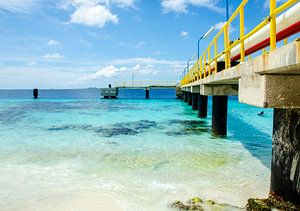 Bonaire van