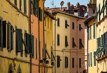 De huizen van Lucca van Ronne Vinkx