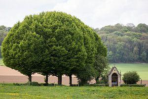 Landschap met kleine kapel en bomen in het Geuldal, Valkenburg
