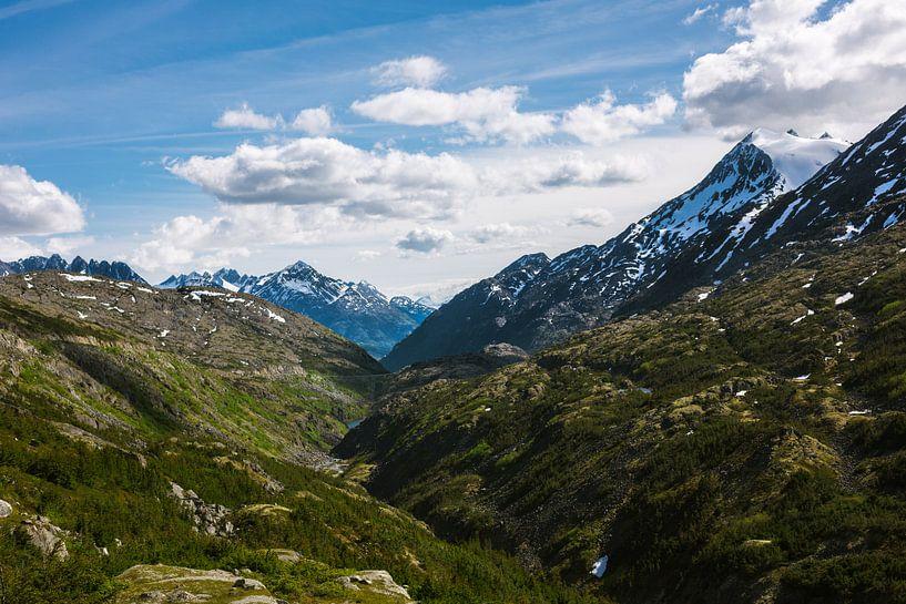 Alaska  van Erwin van Oosterom