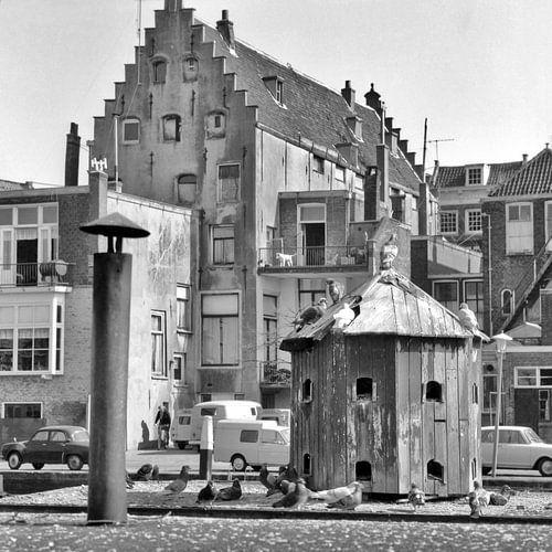Dordrecht duiventil van