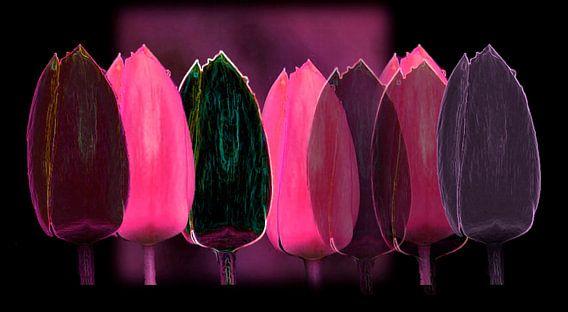 Les tulipes multicolore van Gerda H.