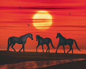 Drie paarden lopen naar elkaar toe op het strand van Jan Keteleer