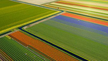 Färgstarka diagonaler