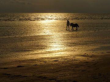 Het strand van Rockanje met meisje en pony in fel tegenlicht van Anneriek de Jong