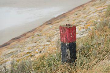 Rode meerpaal op een dijk van Tonko Oosterink
