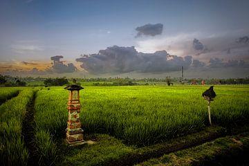 Balinesische Landschaft.... von Wim Schuurmans